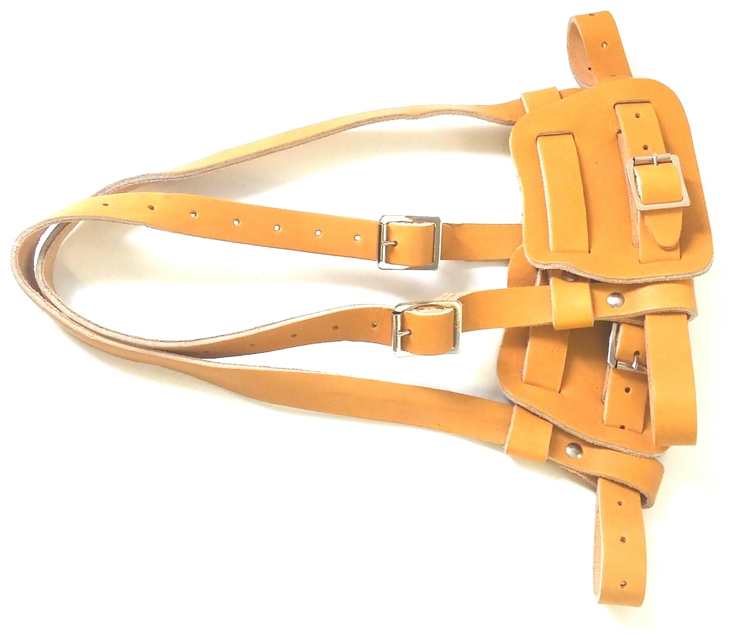 Snowshoes harness